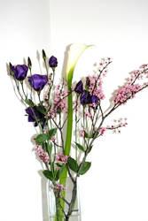 beautiful flowers 1 by elisafox-stock