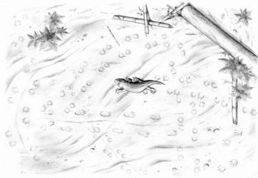 Permian footprints by Biarmosuchus