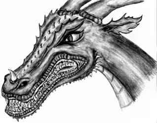 Angry Dragon - Black n' white by omgwhataloser