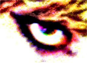 Eye eye by omgwhataloser
