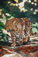 Wild cat by TalaStrogg