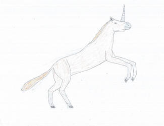 An elusive one-horned horse by PCAwesomeness