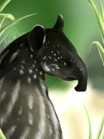 Daily animal 3 - Baby Tapir by DanjiIsthmus