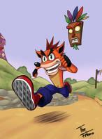 Crash Bandicoot by TheFresco