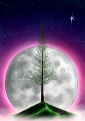Moon pine by robert2715