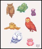 Owls by Klassie