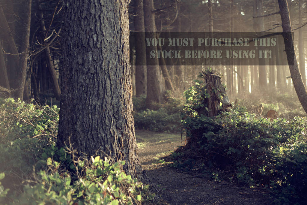 The Forest Whispers Antique Stock by TEMPERATE-SAGE