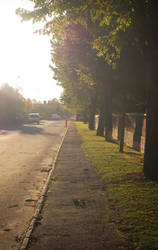 Sunny Autumn Street by jego0320