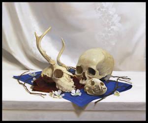 Skulls Stilllife by guchi