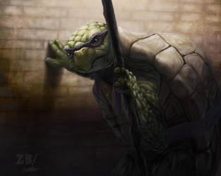 Old Age Mutant Ninja Turtle - remake by Zoltan86