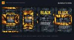 Black Friday Sales Flyers Bundle by satgur
