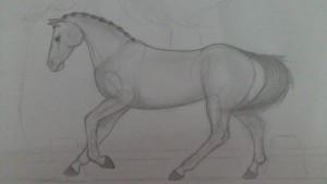 elismye's Profile Picture