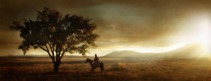 Tree on the Heaven by ugurerbas