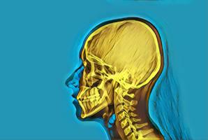 Girl skull by nevit