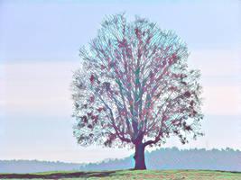 Tree 20180225 123154 by nevit