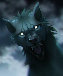 Wolfrott Portrait by TamberElla