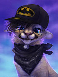 Batcat by TamberElla