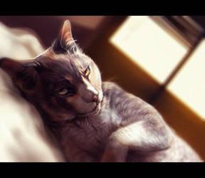 Dozing by TamberElla