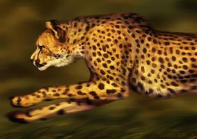 Catamancer Cheetah by TamberElla
