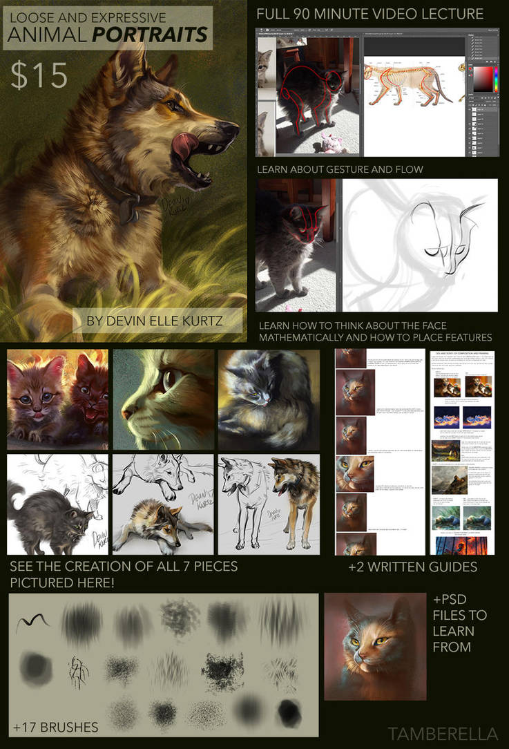 Loose Animal Portraits - Gumroad Tutorial by TamberElla