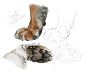 Tiger Paws by TamberElla