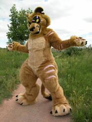 Lion by pinali