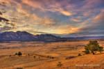 Field of Dreams by Blakannan