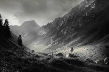 BW Mountains by RobinHalioua