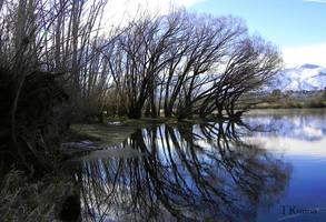 Porter's Pond by TRunna
