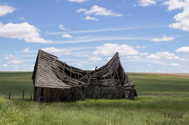 Barnwood by TRunna