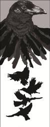 Crows by Amaliavs
