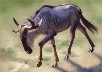 Antylopa GNU by Asfodelium