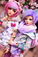 Color Duo by SoftPoison