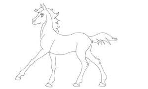 Foal lineart by kokamo77