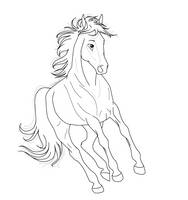 Horse Lineart front PNG by kokamo77