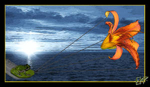 Yes, a Kitesurfing Frog by deathoflight