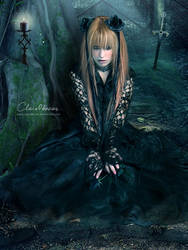 The Queen of Black Roses by clair0bscur