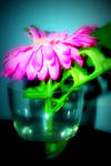 holy crap neon flower by Mimmz