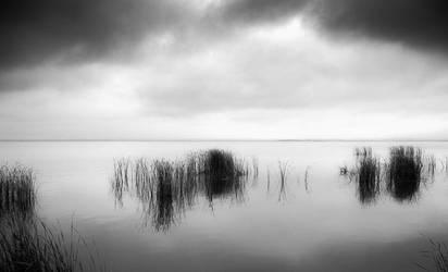 Worlds of Grey by zeevphoto