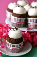 Irish Cream Cupcakes 1 by bittykate