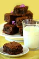 Brownies - 2 - 1 by bittykate