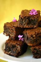 Brownies - 2 - 2 by bittykate