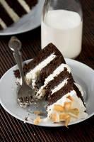 Choc Coconut Milk Cake 1 by bittykate