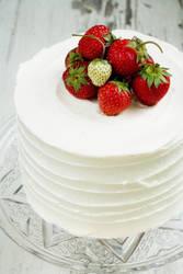 Strawberry Cake w Rose 2 by bittykate