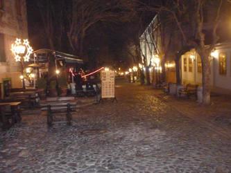A cobbled street in Belgrade by Rackenhammer