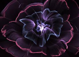 Simple flower. by Kondratij