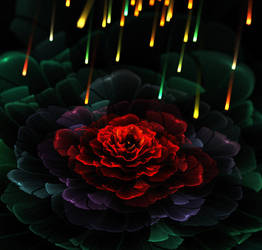 Fire and rose. by Kondratij