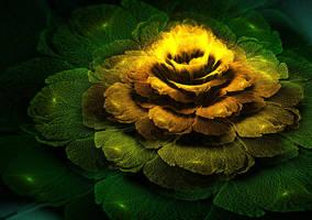 Miracle of the tropics. by Kondratij
