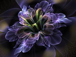 Purple iris. by Kondratij