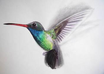 Hummingbird 2 by Brikonfikon